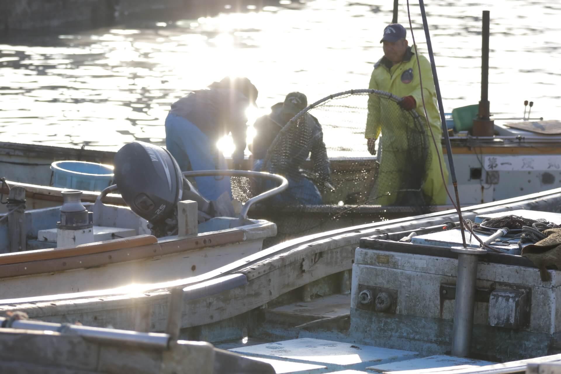 東かがわ市引田漁港で漁をしている様子